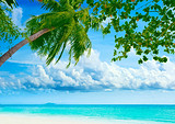 巴厘岛爱在蓝点五天游
