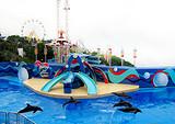 香港海洋公园三天游(纯玩)