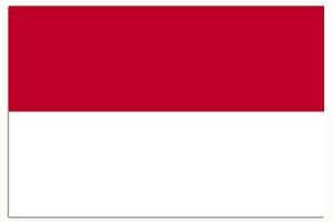 印尼学生/商务批文-代办印尼签证 代办印尼商