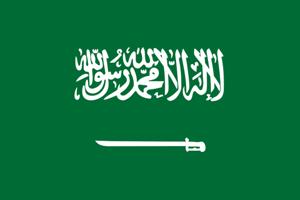 沙特商务签证-沙特商务签证办理 代办沙特商务签证