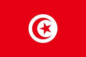 突尼斯过境签-突尼斯签证办理 代办突尼斯签
