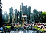 亲子游推荐-深圳去云南旅游-石林西双版纳双飞六天游