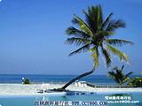 海南万泉河-天涯海角-亚龙湾-分界洲岛风情四天游