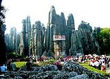 亲子旅游-深圳去云南旅游-石林西双版纳双飞六天游