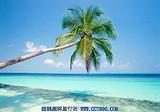 海南旅游路线 海南四天三晚经典游 海口往海南旅游