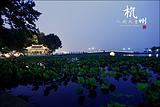 杭州西湖、西溪、夜宿乌镇三天纯玩 杭州旅游攻略 西湖旅游路线