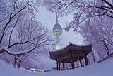 【特价】韩国首尔双飞四日滑雪逍遥游 全程星级酒店