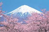 日本本州超值6天游_阪进东出