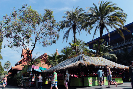 <泰国曼谷、芭提雅七日游>经典双岛、赠送800元特色旅游礼包