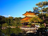 【顶奢和风】澳门龙虎斗娱乐出发去日本 本州全景三飞6日游