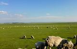 呼伦贝尔大草原、边城满洲里、额尔古纳双飞5日游
