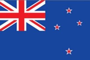 新西兰2-5年多次往返旅游签证
