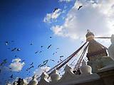 [纯净尼泊尔]尼泊尔+加德满都+奇特旺+博卡拉四飞10日