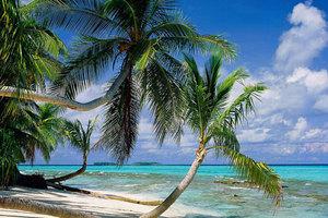 泰安出发到海南 大小洞天、呀诺达、西岛、天涯海角双飞六日游