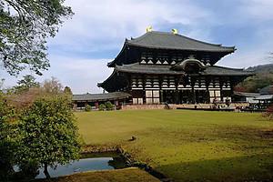 泰安春节日本旅游 日本本州 古都 大阪美食 奈良鹿三飞6日游