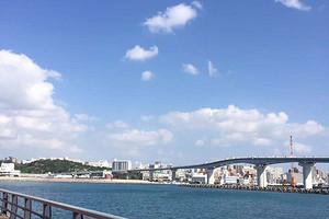 泰安出游去香港 澳门  港珠澳大桥 港澳海洋公园双飞6日游