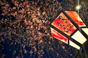 泰安日本旅游签证办理 日本本州温泉美食全景双飞6日