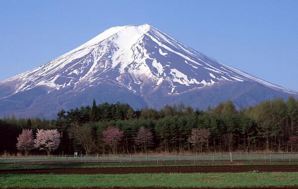 跟团游>青岛到日本东京 大阪 富士山 京都 箱根双飞六日游赏枫叶