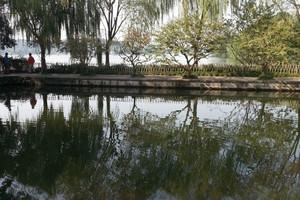 船游西湖+西塘+乌镇西栅+西溪湿地+双卧五日游