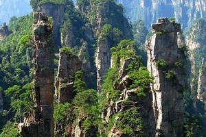 石家庄旅行社推荐 张家界、玻璃桥、凤凰古城双飞五日游