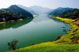 周边二日游:兴化千垛油菜花 泰州老街 凤城河 溱湖湿地二日游