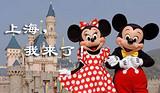 上海自由行 苏州七里山塘 杭州西湖西溪湿地四日游