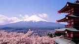 青岛去日本玩什么  青岛到日本双古都京都和奈良双飞六日游