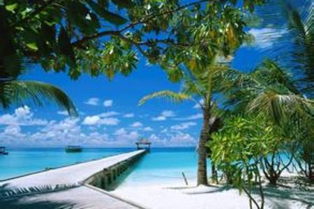 去海南玩什么 青岛到海南蜈支洲岛 天涯海角 三亚千古情双飞6