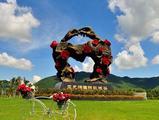 爸妈三亚旅游攻略 青岛到三亚槟郎谷 玫瑰谷双飞5日游