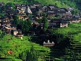 寒假国内旅游线路推荐 青岛到贵州黄果树大瀑布 苗寨双飞五日游