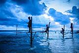 斯里兰卡旅行攻略 青岛到斯里兰卡双飞8日游