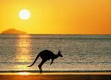 游轮旅游线路  青岛到澳洲公主号邮轮十一日游