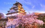 暑假带孩子去哪玩  日本本州东京大阪奈良富士山双飞六日游