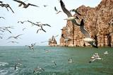 海滨旅游城市推荐  端午来青岛玩海底世界 电视塔 栈桥