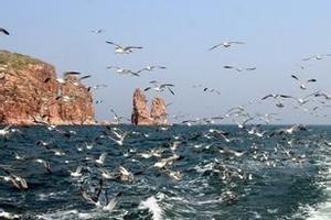 威海旅游景点推荐  青岛到威海刘公岛烟台蓬莱阁两日游