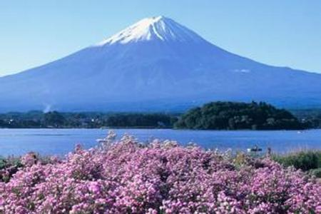暑期旅游热门城市推荐  青岛到日本东京大阪名古屋双飞六日游