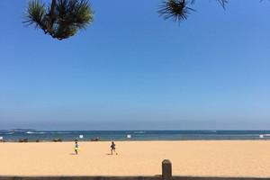 【金沙滩纯玩】青岛金沙滩 跨海大桥 海底隧道一日游