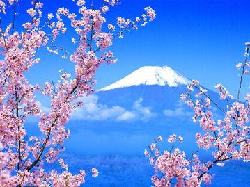 重庆到日本本州迪斯尼6日亲子游  东京富士山