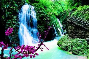 重庆到中国最美养生峡谷—黑山谷一日游