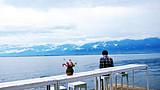 重庆到日本醉美樱花祭。东京+富士山+京都+大阪臻品6日游