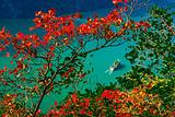 重庆到三峡旅游特价-重庆-宜昌长江三峡游船单程2日往返3日游