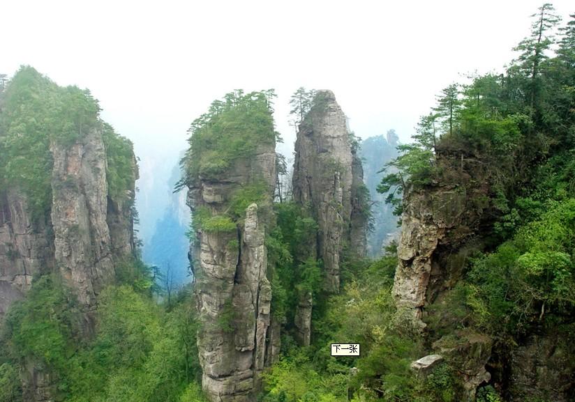 旅行社招徕游客来洛阳 最高可获4万元奖励