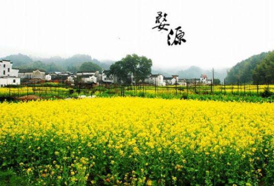 三月,爱她就带她去婺源,去中国最美的天堂!