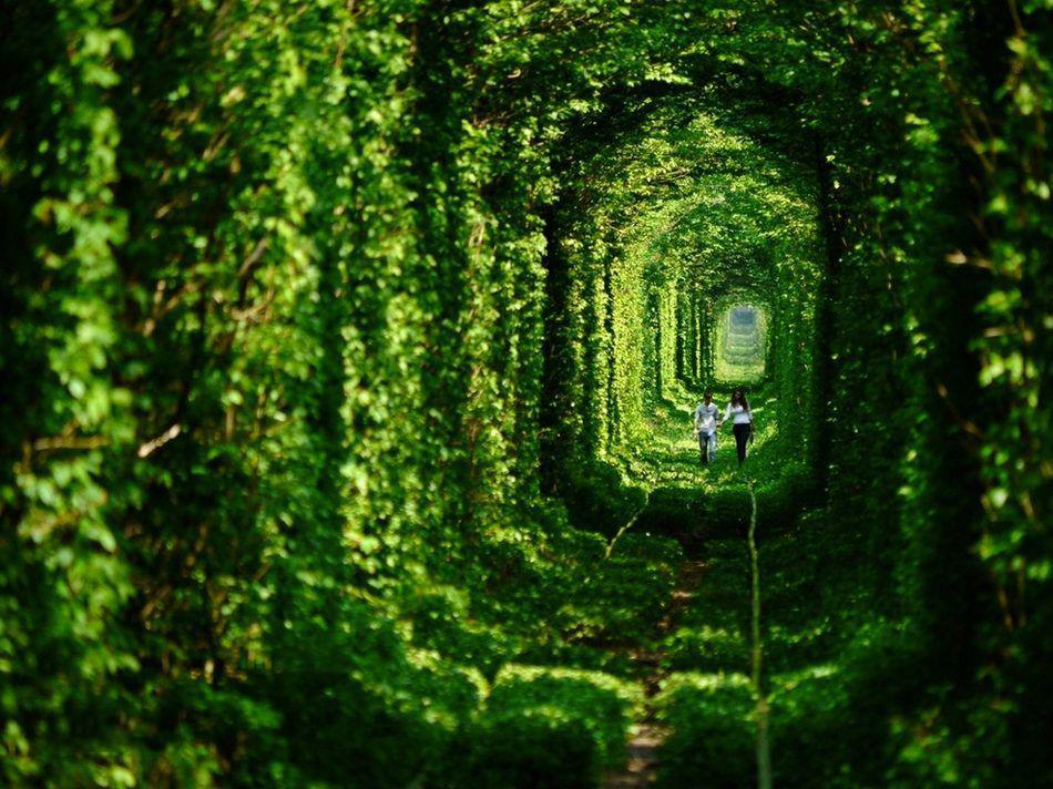 爱情隧道<