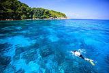 重庆普吉岛7天游-斯米兰+海豚湾+全程0自费+一天自由活动