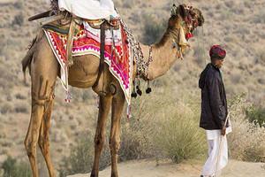 重庆出发印度7天特别赠送价值千元大礼包 印度文明探秘之旅