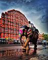 重庆起止神秘印度文化艺术探寻之旅13日游