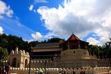 重庆斯里兰卡7天游(乘吉普车游国家公园+船游红树林+狮子岩)