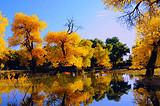 金色胡杨林、巴丹吉林沙漠、张掖丹霞、宁夏沙湖、沙坡头八日游