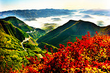 丝路绝景火石寨、清凉世界六盘山、道教仙境崆峒山三日游
